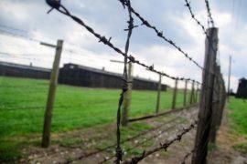 Vedere Majdanek*