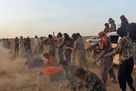 L'Islamizzazione del Radicalismo