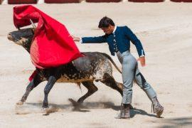Corrida de toros: in bilico tra tradizione e tortura