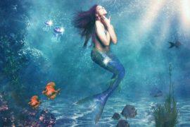 Sirena del blumarino