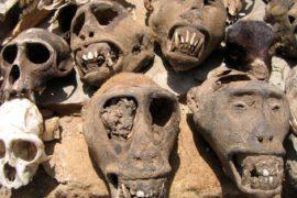 Akodessewa: il mercato dei guaritori voodoo