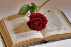 Barcellona: profumo di rose e libri nella festa patronale