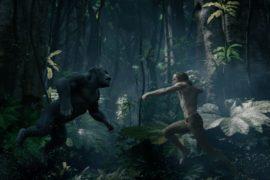 The Legend of Tarzan: una saga che dura da 104 anni