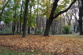 AUTUNNO IN ME