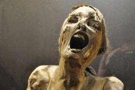 I sei musei più strani ed inquietanti del mondo