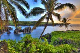 Gennaio: il mese ideale per andare alle Hawaii