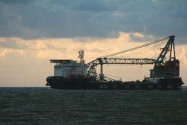Oleo Sponge, la spugna che assorbe il petrolio dal mare e salva l'ambiente
