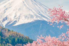 Primavera e poesia: un connubio innato