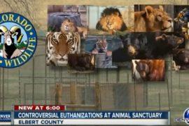 In Colorado una riserva ha scelto di sopprimere i suoi animali