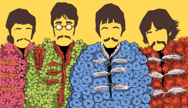 La copertina di Sgt. Pepper's: un intrigo di storie e volti