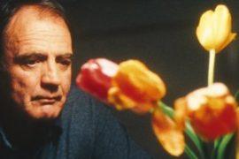 Pane e tulipani: un intreccio di vite solitarie