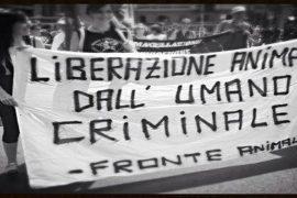 """""""Liberazione animale"""": la lotta di Peter Singer"""