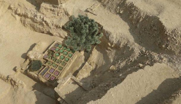 Il giardino funerario di Sinuhé: piante e alberi che accompagnavano il defunto nell'Antico Egitto