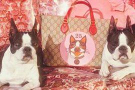 La moda omaggia l'anno del Cane