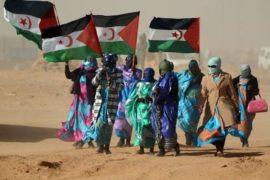 La Saharamarathon: una corsa per il popolo dimenticato