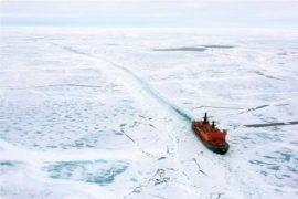 La 50 Years of Victory: quando iceberg e navi vanno a braccetto