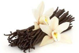 Sapore di vaniglia del Madagascar, con retrogusto di violenza e deforestazione