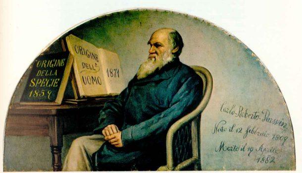 Il matrimonio secondo Darwin