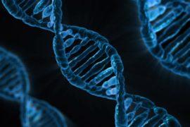 La scoperta della struttura del DNA