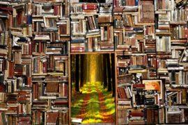 Gli insegnamenti della letteratura: perché non possiamo smettere di leggere Dante e compagnia bella