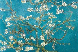 Un fiore a marzo