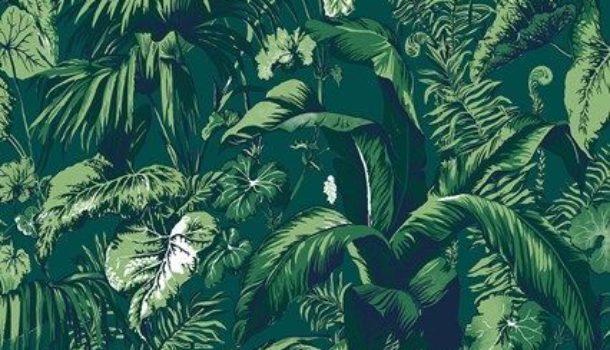 50 sfumature di Green Travel