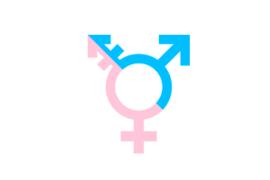 Persone trans e mondo del lavoro: difficoltà, percezioni e proposte