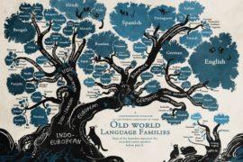 Sopravvivere al tempo: anche le lingue rischiano l'estinzione