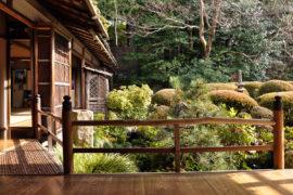 Il giardino giapponese: il luogo d'incontro tra estetica, design e natura