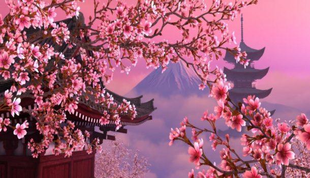5 curiosità made in Giappone