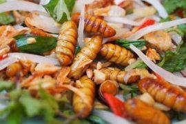 Tabù alimentari: l'entomofagia