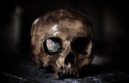 La paura del divenire: Il Programma, l'esordio di Davide Staffiero