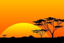 La corsa all'Africa del millennio