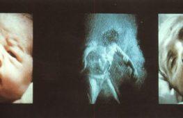 Nantes Triptych di Bill Viola. Il tabù della morte nella società contemporanea