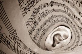 La passione per la musica è innata, l'apprendimento meno