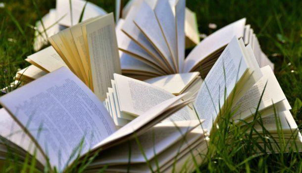 Mondi post-apocalittici e ambientalismo: il successo dei romanzi Young Adults