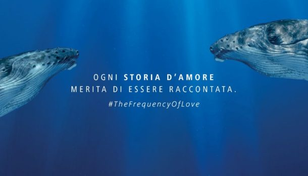 The frequency of love: l'ambiente produce musica