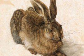 Il Genio di Albrecht Dürer tra Natura e Idea