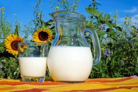 Intolleranza al latte e genetica: breve storia della lattasi